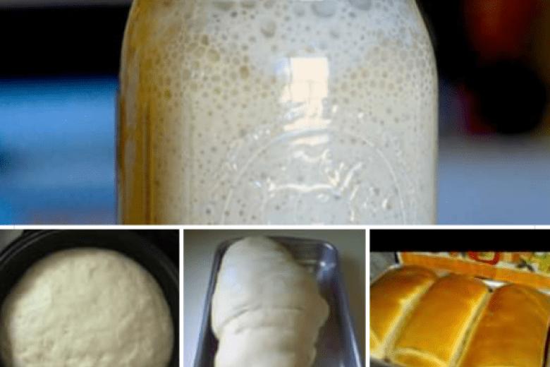 Receita de fermento de litro ou fermento de cristo