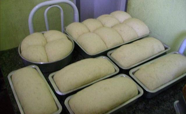 Receita de pão da titia muito fácil e prático de fazer